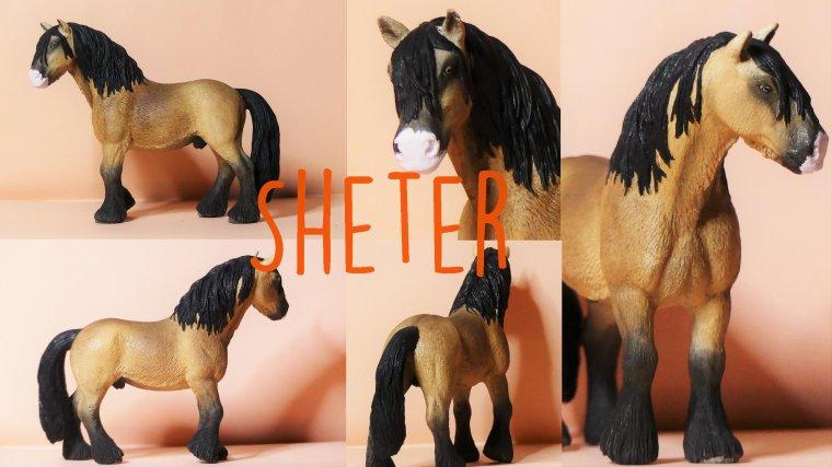 Sheter