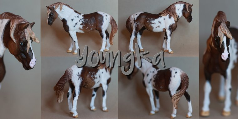 Youngka