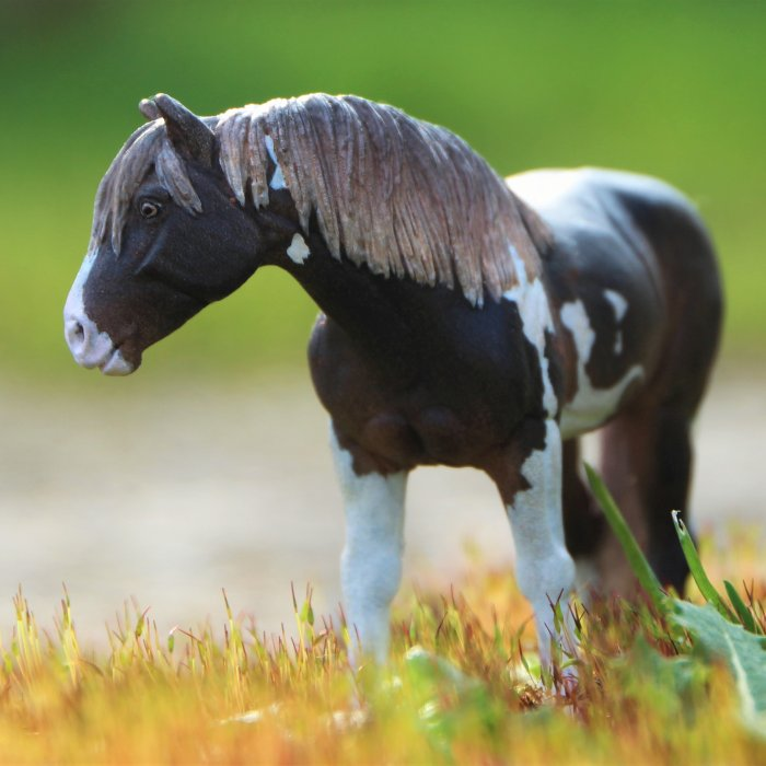 Blog de REC-schleich-custom