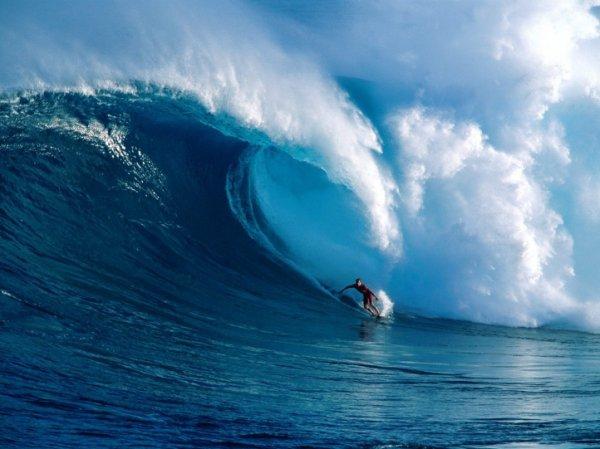 une  putain  de vague