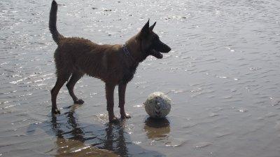 Jareck a la plage (6 mois)