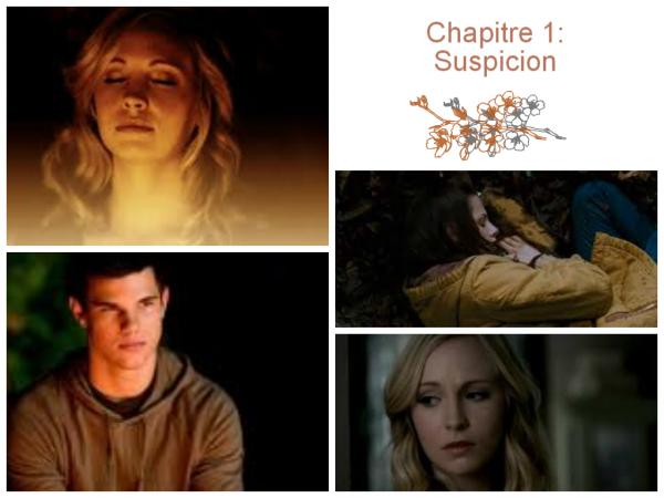 Chapitre 1 : Suspicion