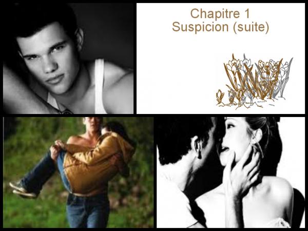 Chapitre 1 : Suspicion (suite)