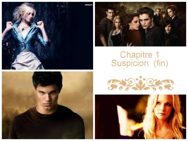Chapitre 1.2 (fin) : Suspicion