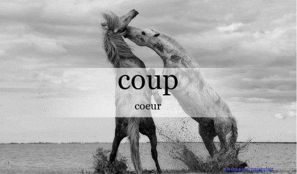 blog coup c½ur ♥