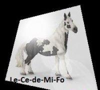 Blog de Le-Ce-de-Mi-Fo