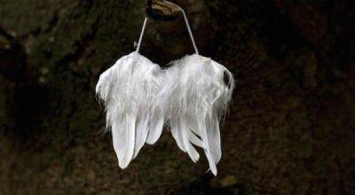 Les anges sont des vampires comme les autres SLATE.fr
