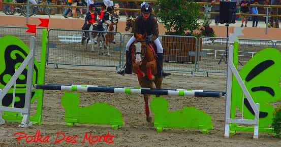 Mes Championat de France à Poneys à Lamotte Beuvron
