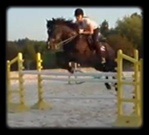 Il fallait une sacré paire de C******* pour aller sauter ça ou alors un poney extraordinaire