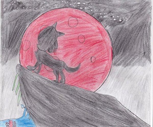 Soir de pleine lune