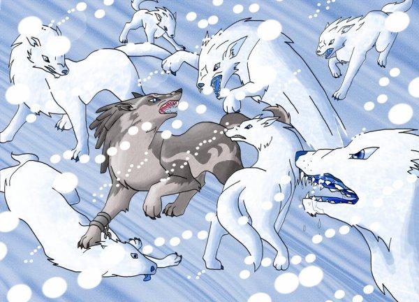Rex VS les loups blancs des neiges
