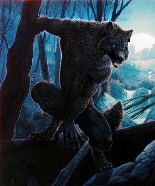Rex en... en loup garou ?