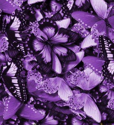 signification des couleurs le violet nina la vnip. Black Bedroom Furniture Sets. Home Design Ideas