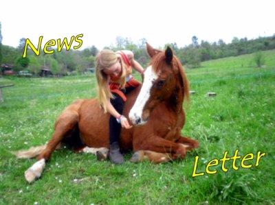 -News Letter-