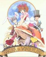 sakura in wonderland
