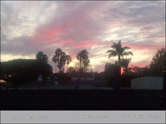 11/02/2012- Greyson Chance prend une photo du ciel avec des palmiers. 13/02/2012- Greyson Chance et sa télé.. hihi.
