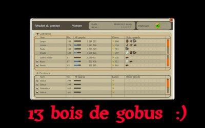Up de Lergo 198 // Drop gobus
