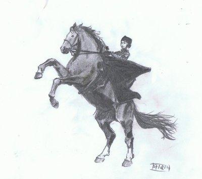 Musée vivant du cheval à Chantilly
