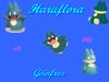 Haruflora