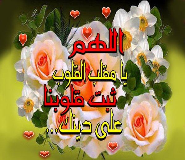 Louange à Allah, Créateur des Cieux et de la Terre.