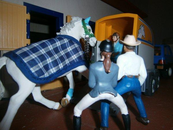Stage poney-Mercredi