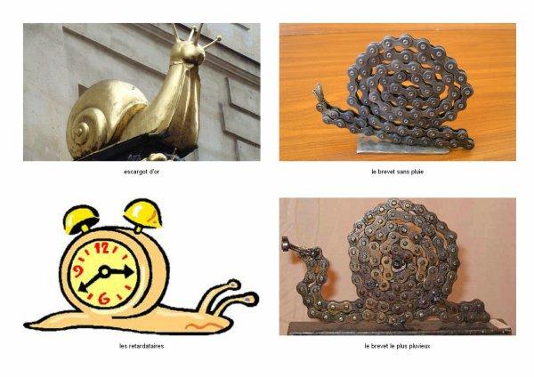 cette année l'escargot d'or pour le brevet club le  plus malchanceux  ( la pluie )
