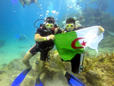 Algeria everywhere