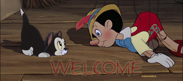 › Welcome