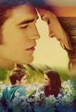 Photo de Twilight--76