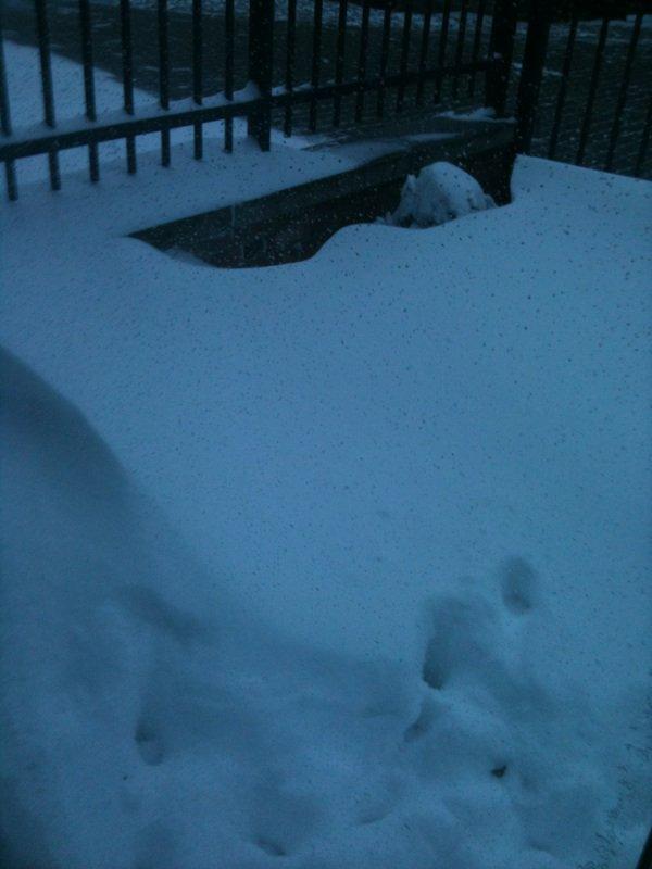 Bref , Hier y'a neiger x)