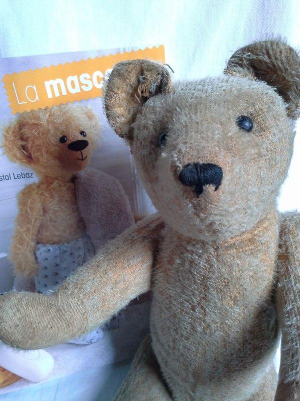 Un ours en manque ...!!!!