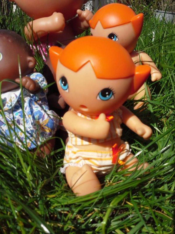 Dans l'herbe tendre .....!