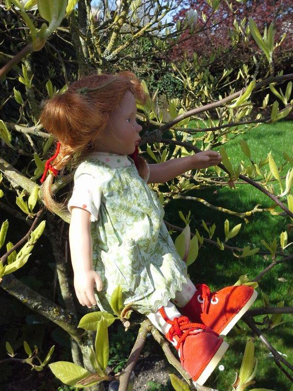 Sur un arbre perchée ....!!!