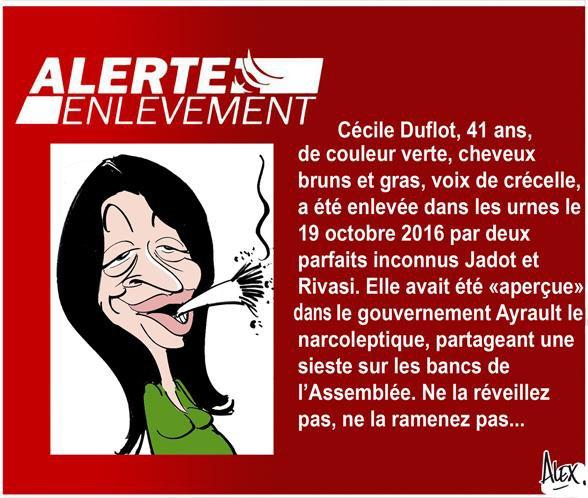 """Spécial """"Cécile DUFLOT - ALERTE ENLÈVEMENT"""" - Image n° 3/3 !..."""