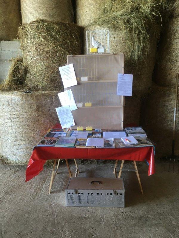Exposition nature au village de Saint Jeure d'Ay 07 les pigeons voyageurs sont présents.A bientôt.Philippe.