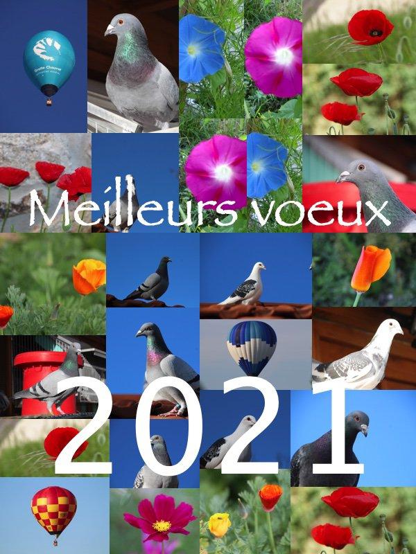Bonnes fêtes de fin d'année et mes Meilleurs Voeux pour 2021