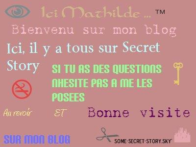 Bienvenu( e ) sur mon blog !:)