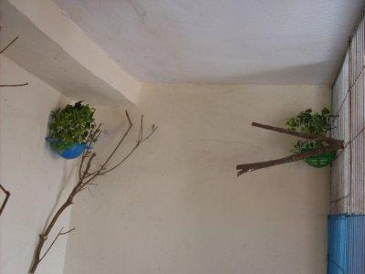 """les nids d""""accouplements"""