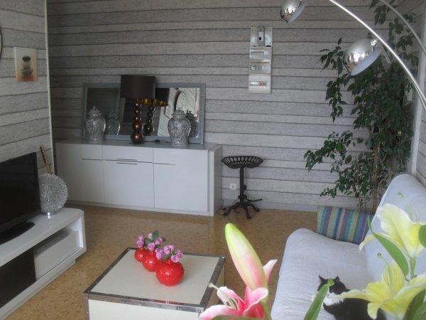 decoration salle  et salon style moderne avec papier pient style larme de bois