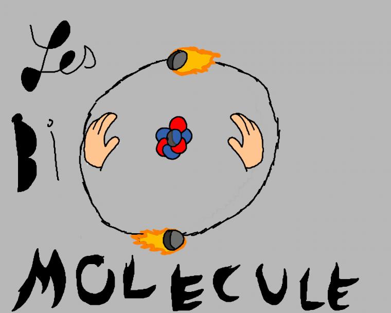 """Les """"BIO molecule"""" tout les jours en concert"""