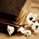 Photo de Lettres-Idylliques