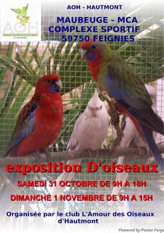 Exposition Bourse de L'AOH  Jacques Pecqueriaux