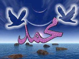 tt le monde voit l'islam comme une étrange religion !