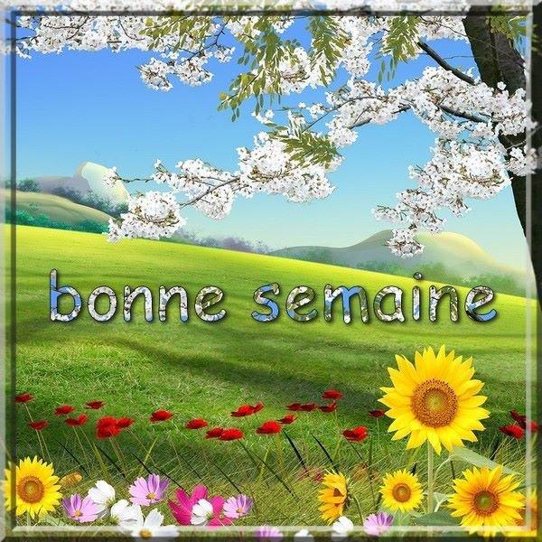 bonjour ! je souhaite à tous mes ami(e)s un agréable lundi... et un excellent début de semaine ...bisous Josie