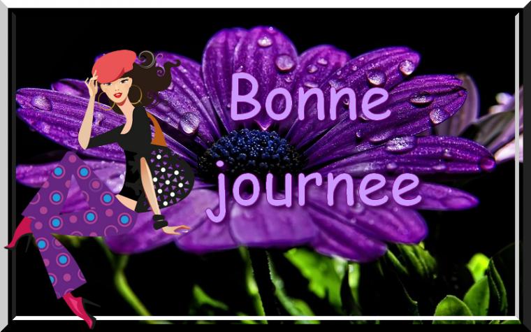 Bonjour  - Page 5 3255914168_1_3_MC3ob92a