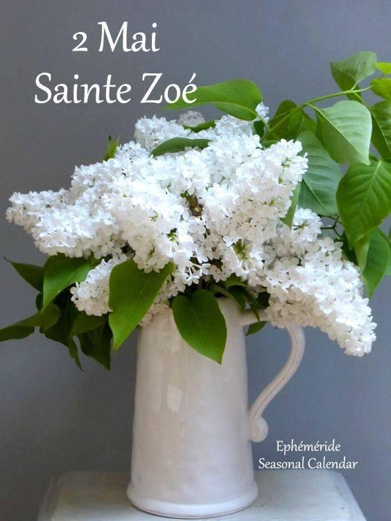 bonjour mes amis(e)s.. je vous souhaite un excellent appétit .. et un agréable après midi de mardi, ici de nouveau la pluie !!!! .. bisous Josie