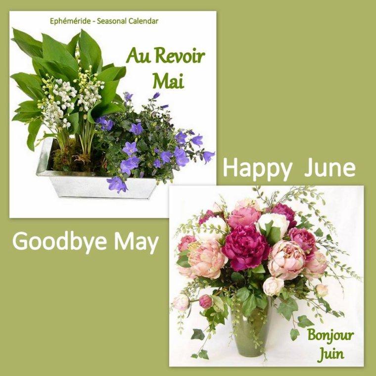bonjour mes amis(e)s.. je vous souhaite un très bon appétit .. et un agréable après midi du jeudi 1er Juin, avec le soleil .. bisous Josie