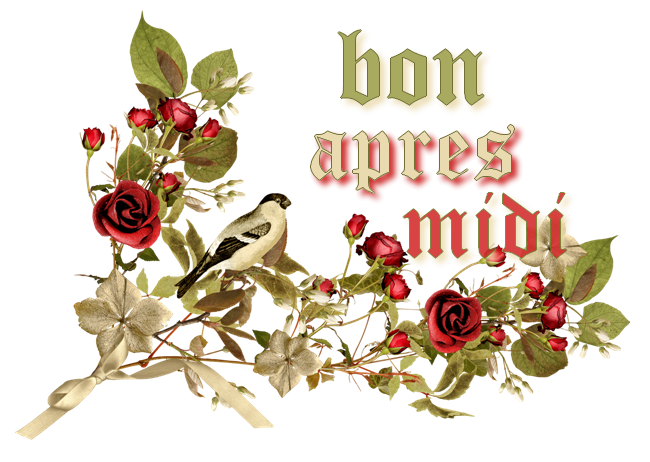 bonjour mes amis(e)s.. je vous souhaite un excellent appétit .. et un agréable après midi du dimanche de Pentecôte, avec un magnifique soleil .. bisous Josie