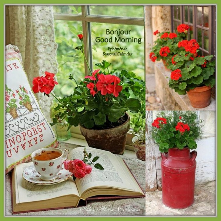 bonjour mes amis(e)s.. je vous souhaite un très bon appétit .. et un agréable après midi de jeudi, ici soleil et chaleur écrasante !!!!!  .. bisous Josie