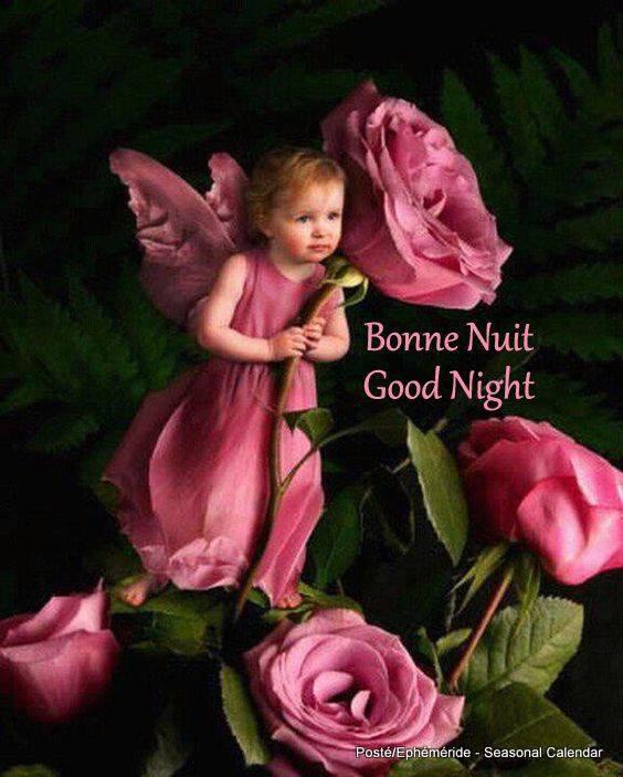 bonsoir à tous mes amis(e)s ..je vous souhaite une excellente soirée ,et une nuit douce et paisible ... bisous Josie